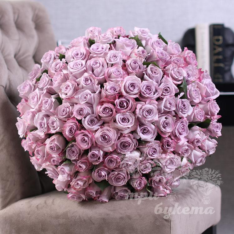 101-purpurnaya-roza-premium-60-sm