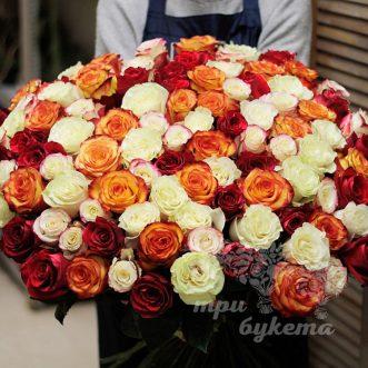 101-raznocvetnaya-roza-premium-80-sm